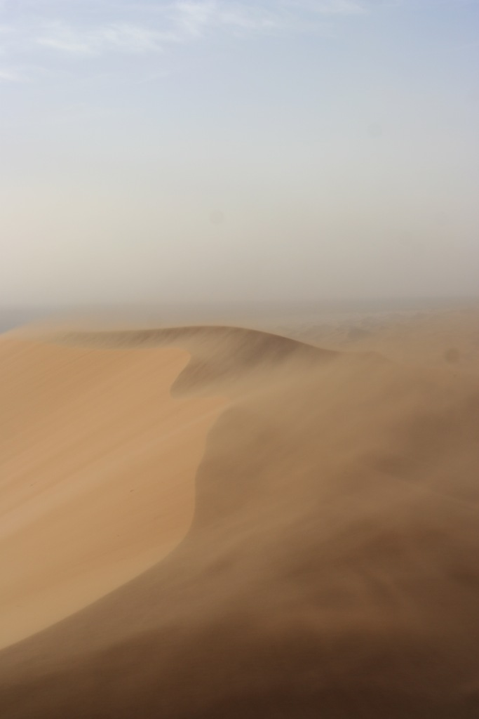 Sand Storm Gutsy