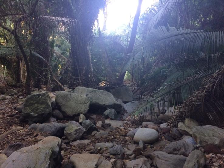 Rocks Chacala Travel