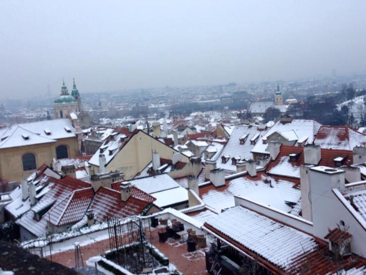 Bird's Eye Prague