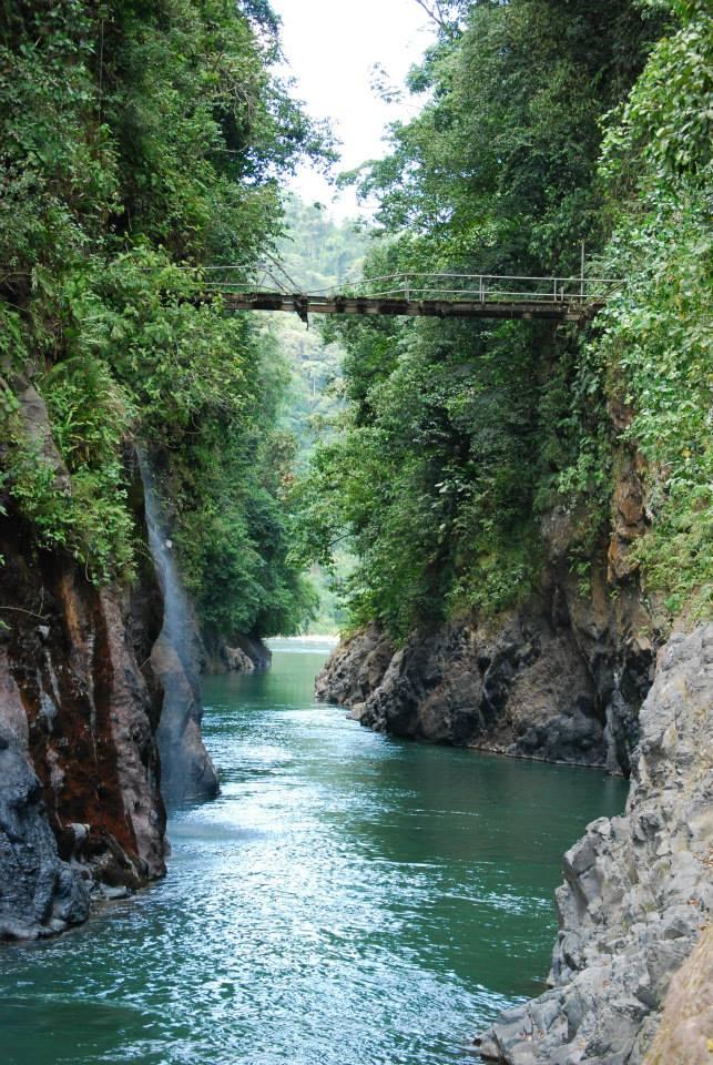 Bridge Rafting River