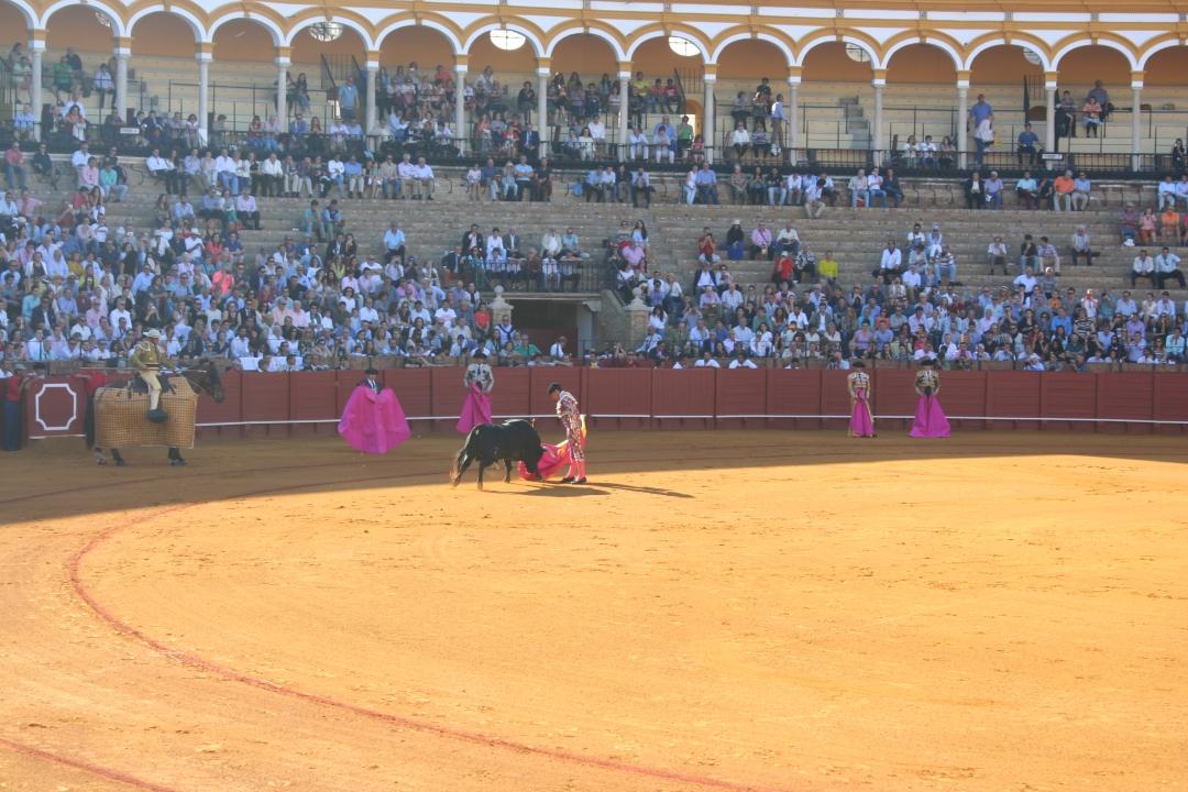 matadors bullfight seville