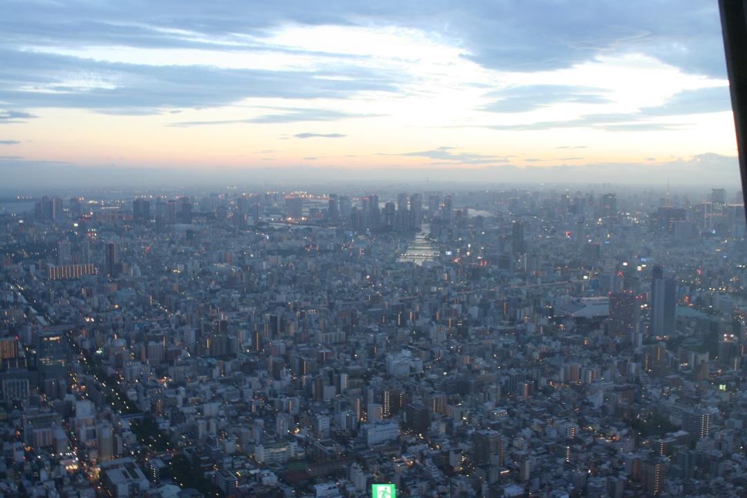 tokyo birdseye view
