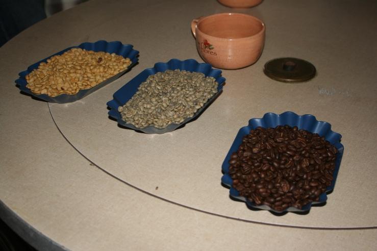 coffee tasting IVY