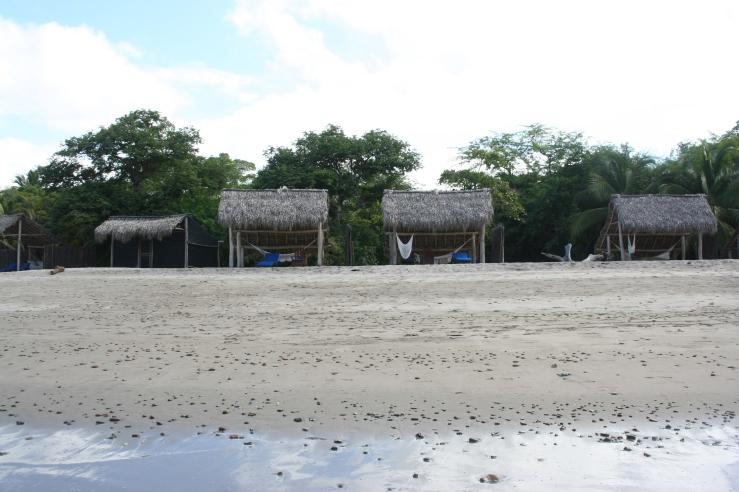 private beach IVY